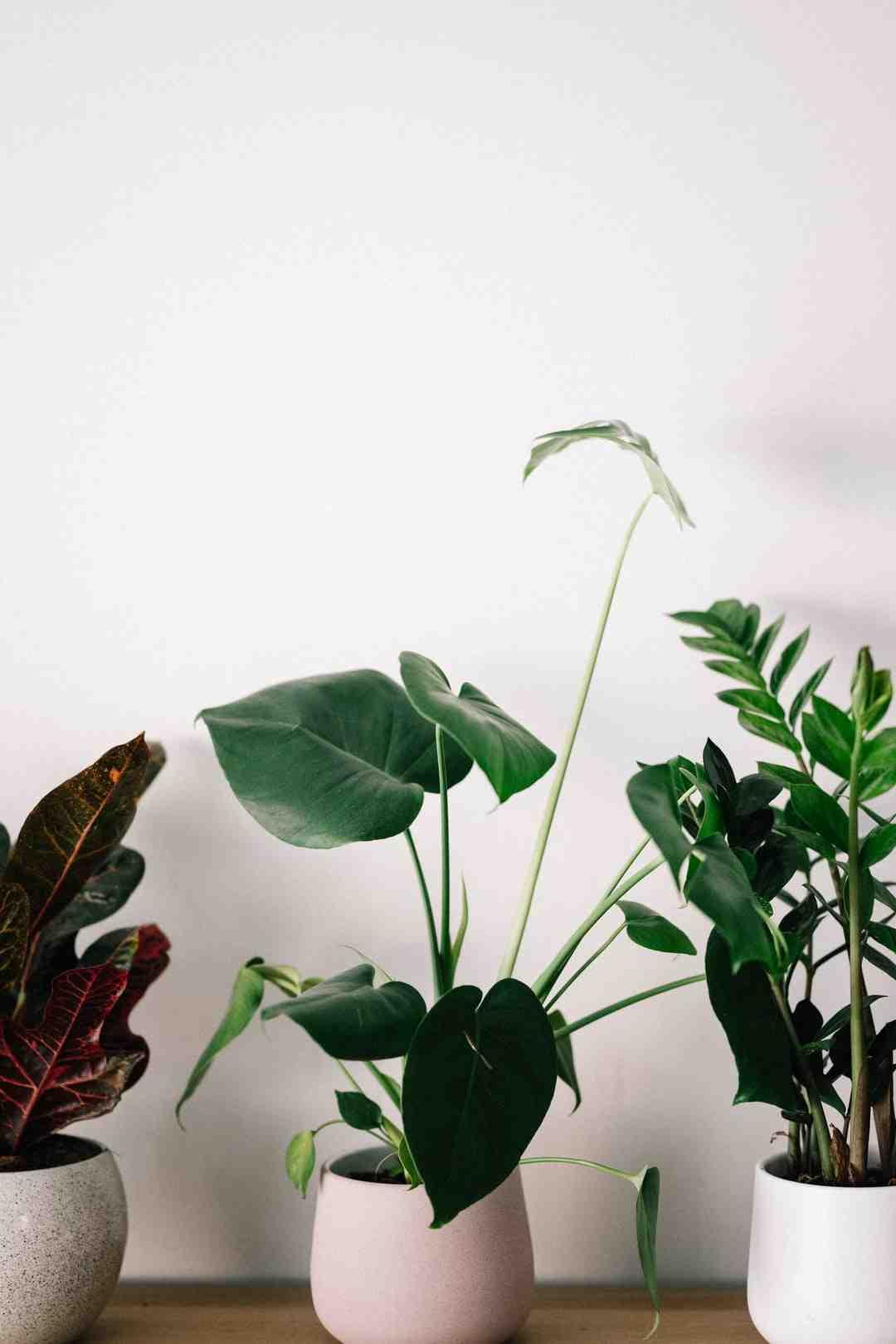 Comment sceller hermétiquement un pot?